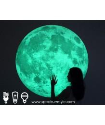 家居用品 - 世界最大夜光月球壁貼 法國製造 獨家呈獻