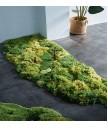 地毯 - 經典心型花園圖案地毯 時尚有型 部屋必備